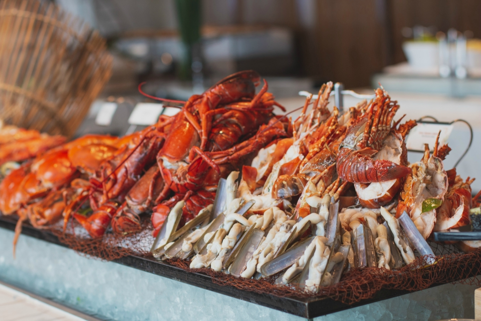 assorted seafood buffet king crab lobster king prawn luxury hotel hanoi
